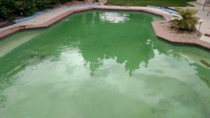 Pool before Ozone treatment